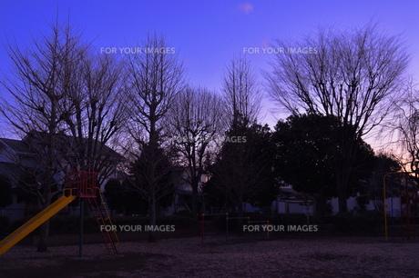 公園・冬の夕暮れの素材 [FYI00152438]