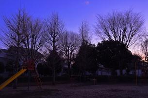 公園・冬の夕暮れの写真素材 [FYI00152438]