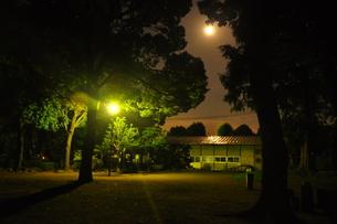 月明かりと街灯の下での写真素材 [FYI00152443]