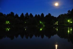 池に反射する月明かりの写真素材 [FYI00152444]