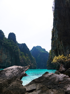ピピ島の写真素材 [FYI00152466]