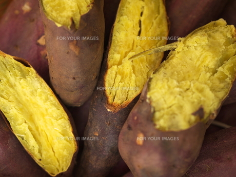 石焼き芋の素材 [FYI00152470]
