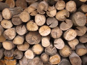 山積みの薪の素材 [FYI00152479]