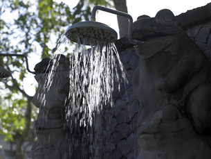カエルのシャワーの写真素材 [FYI00152684]