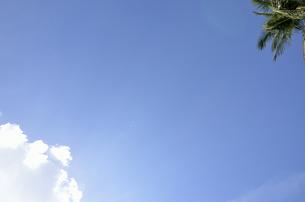 南国の空の写真素材 [FYI00152703]