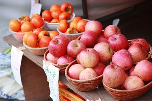 りんごの写真素材 [FYI00152753]