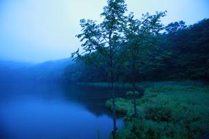 沼の写真素材 [FYI00152759]