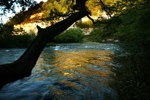 夕暮れの川の写真素材 [FYI00152765]