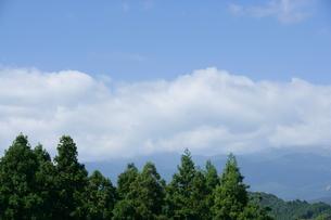 夏の空の写真素材 [FYI00152774]