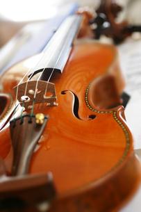 バイオリンの写真素材 [FYI00152780]