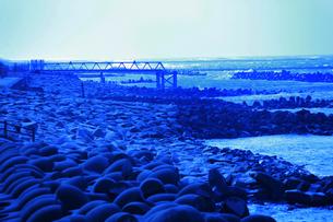 海岸の写真素材 [FYI00152803]