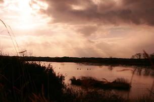 沼の写真素材 [FYI00152823]