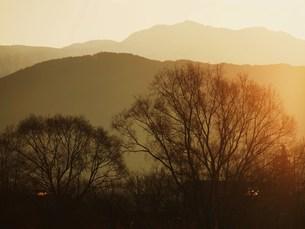 朝の風景の素材 [FYI00152885]