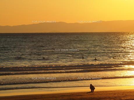 海辺の散歩の素材 [FYI00152922]