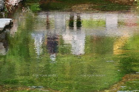 水面に映る親子連れの写真素材 [FYI00153051]