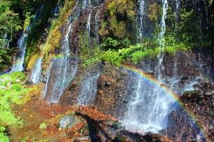 岩肌を流れるの写真素材 [FYI00153313]