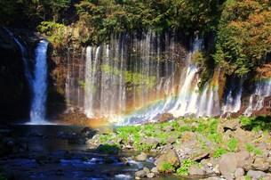 白糸の滝の写真素材 [FYI00153316]