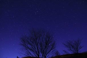 星空の写真素材 [FYI00153320]