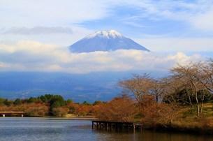 富士山の写真素材 [FYI00153328]