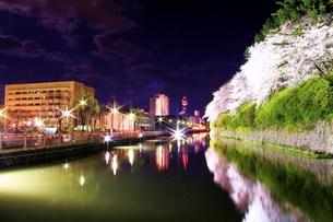 夜桜の写真素材 [FYI00153330]