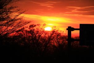 夕日の写真素材 [FYI00153340]
