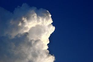 大きな入道雲の写真素材 [FYI00153526]