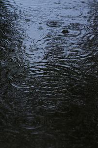 水たまりの波紋の写真素材 [FYI00153545]