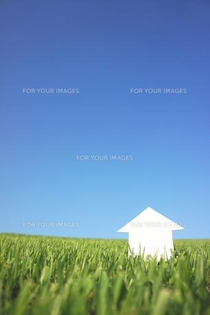 芝生のペーパーハウスの写真素材 [FYI00153767]