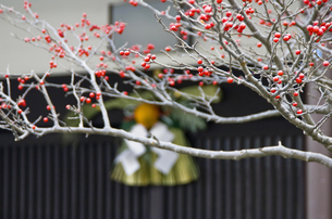 お正月飾りの写真素材 [FYI00153867]