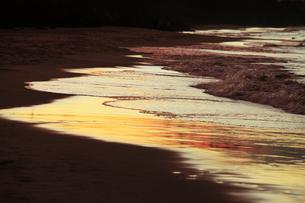 美しい波打ち際の写真素材 [FYI00154096]