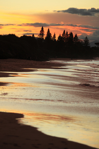 バイロンベイのビーチの写真素材 [FYI00154100]
