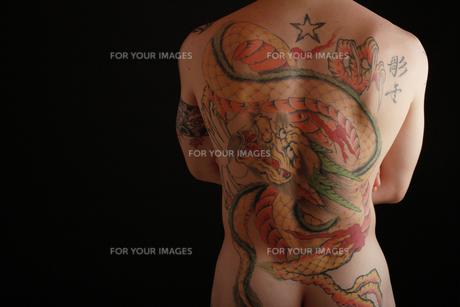 和彫りの男性の写真素材 [FYI00154118]