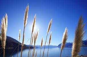 美しい湖、HAWAYAの写真素材 [FYI00154123]