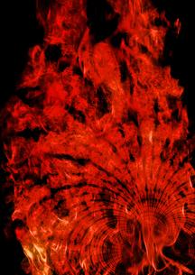 炎の写真素材 [FYI00154212]