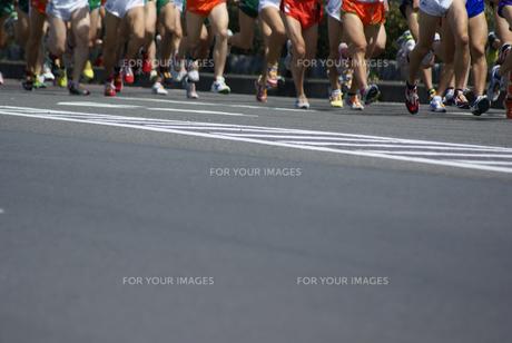 マラソン大会の写真素材 [FYI00154230]