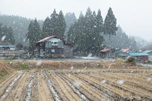 雪の集落の写真素材 [FYI00155008]