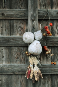 小屋とひょうたんの写真素材 [FYI00155461]