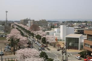 十和田市現代美術館と官庁街通りの写真素材 [FYI00155466]