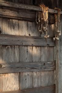 小屋とニンニク玉の写真素材 [FYI00155647]
