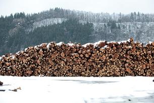 杉の丸太積みと雪の写真素材 [FYI00155687]