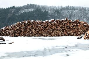 杉の丸太積みと雪の写真素材 [FYI00155688]