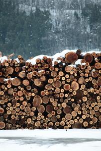杉の丸太積みと雪の写真素材 [FYI00155689]