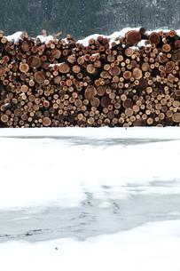 杉の丸太積みと雪の写真素材 [FYI00155693]