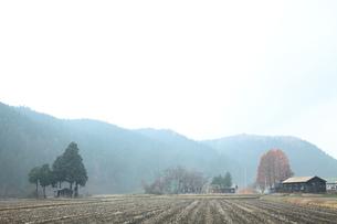 里山の校舎と神社の写真素材 [FYI00155901]