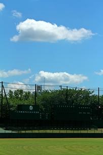 野球場 スコアボードと青空の写真素材 [FYI00156214]