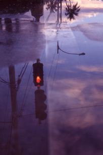 水たまりに映るシグナルの写真素材 [FYI00156464]