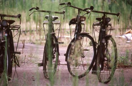 古い自転車の素材 [FYI00156496]