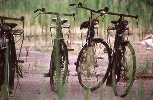 古い自転車の写真素材 [FYI00156496]