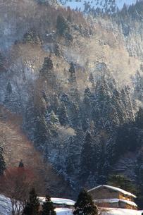 里山の写真素材 [FYI00156535]