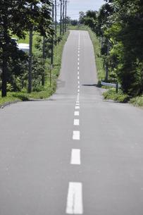 ジェットコースター道の写真素材 [FYI00156542]